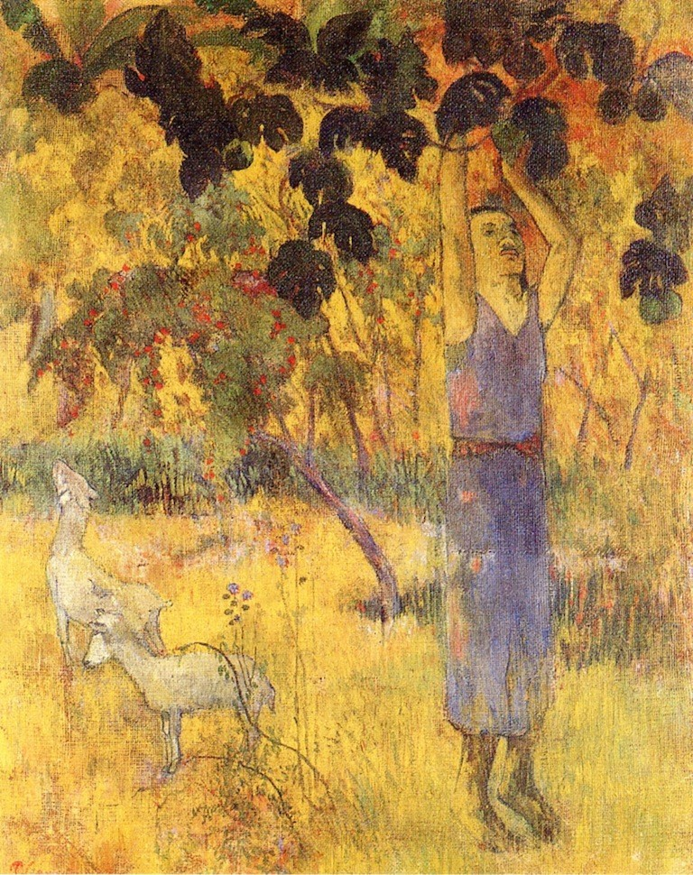 Man picking fruit from a tree 1897 the hermitage st peter